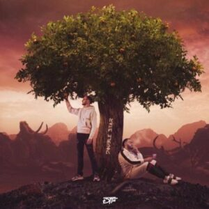 DTF – Double Star Album Complet